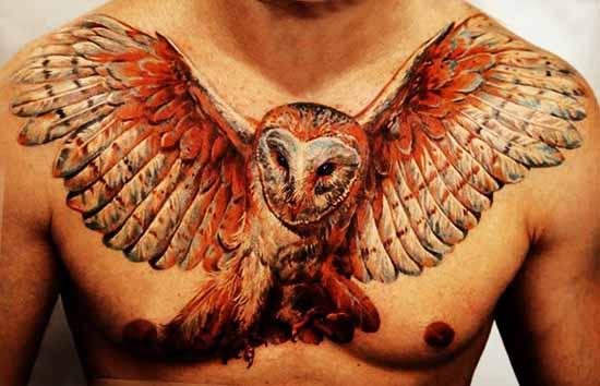 Wings bird tattoo design