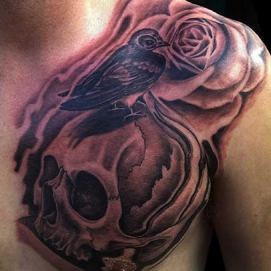 Skull And Bird Tattoo Designs