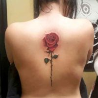 Image Female Spine Tattoos